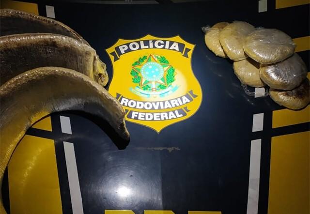 Peruanas são presas em Rondônia com 12,5 kg de pasta base de cocaína