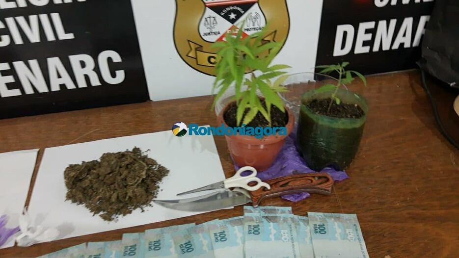 Denarc prende homem com droga e pés de maconha em Porto Velho